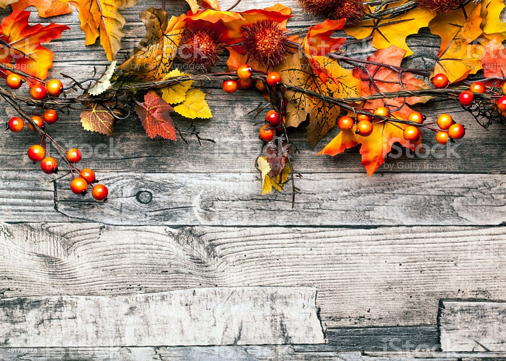 autumn background with leaves and berries stock photo
