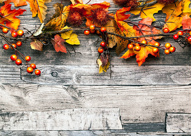 autumn background with leaves and berries - holidays and seasonal stock pictures, royalty-free photos & images