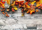 秋を背景に、ベリー