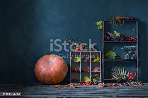 1020586746 istock photo autumn background with leaves, pumpkin and berries 1253804741