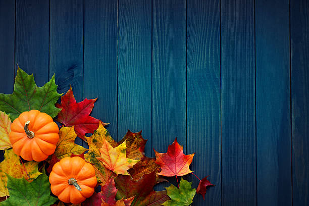 Autumn background with maple leaves and pumpkins on turquoise-blue woods Autumn background with maple leaves and pumpkins on turquoise-blue woods maple leaf photos stock pictures, royalty-free photos & images