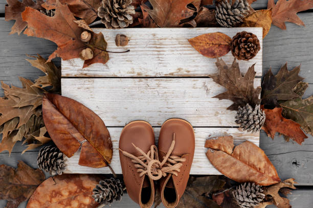 Autumn background with natural leaves, pine cones and leather shoes on aged wood with copy space stock photo