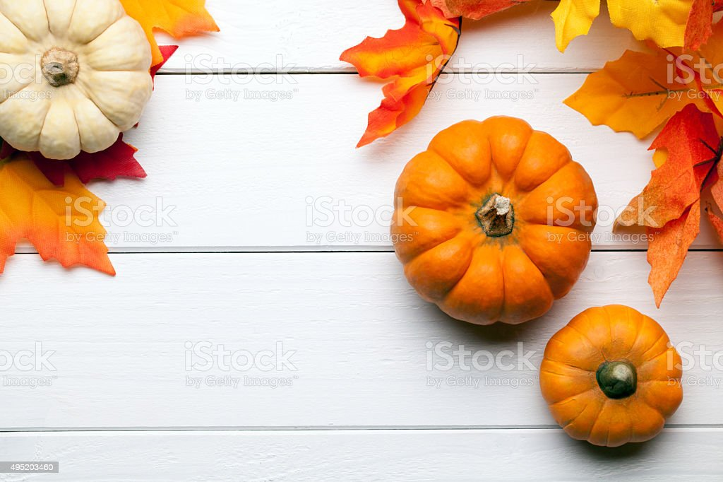 autumn background with pumpkins