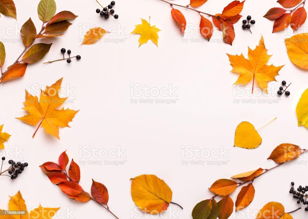 Herfst achtergrond met ronde frame met witte Blanco ruimte - Royalty-free Abeel Stockfoto