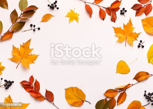 istock Autumn background with round frame with white blank space 1169954686