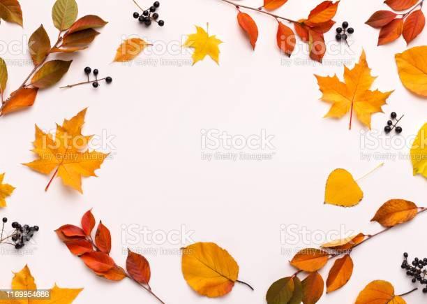 Herfst Achtergrond Met Ronde Frame Met Witte Blanco Ruimte Stockfoto en meer beelden van Abeel