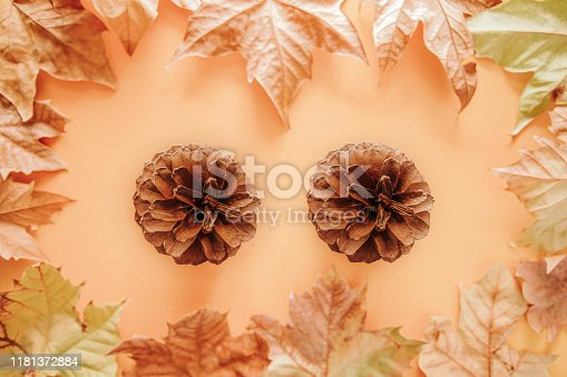 istock Autumn background with two pine cones and colorful maple leaves on a brown background 1181372884