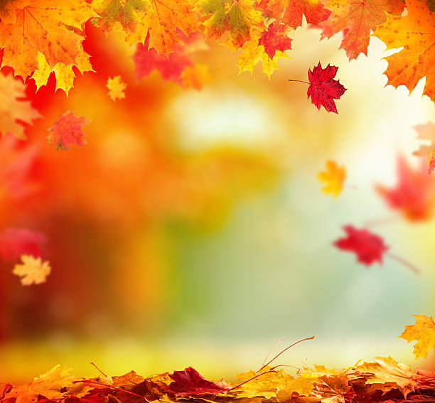 Fall Wallpaper Images Free: Autumn Pictures, Images And Stock Photos