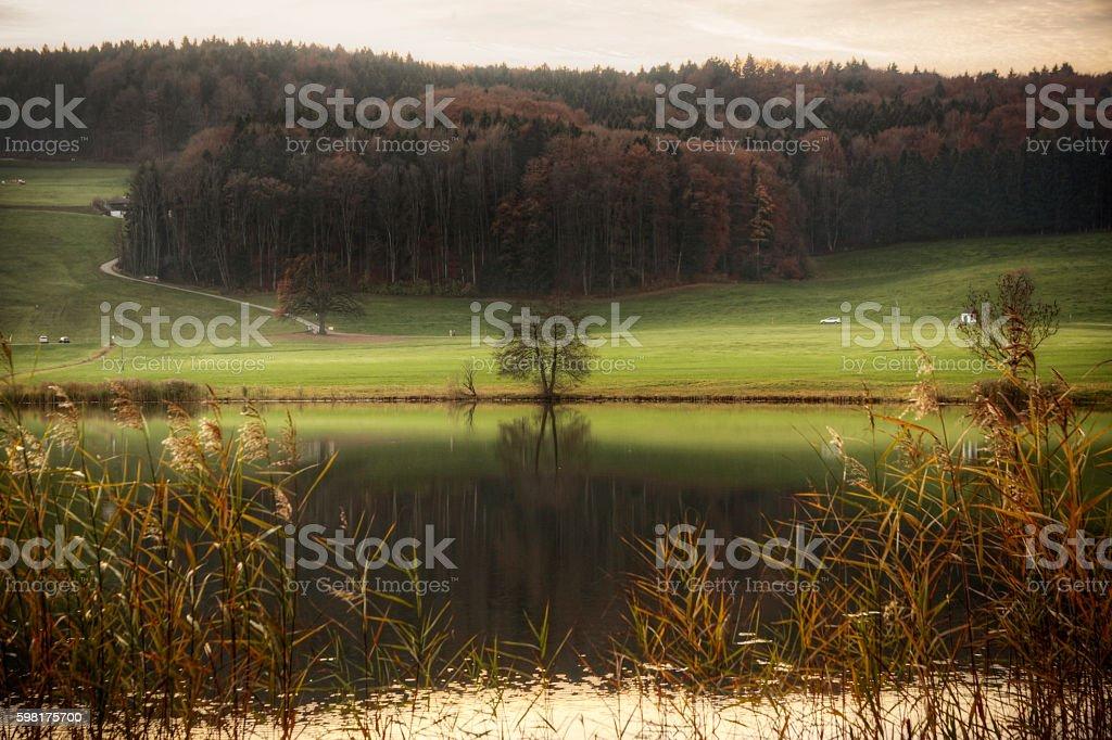 Autumn Balance stock photo