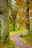 Autumn park with gravel pith and a bench to rest on