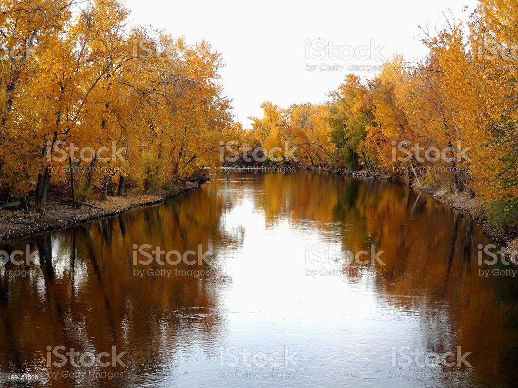 Autumn Blaze stock photo