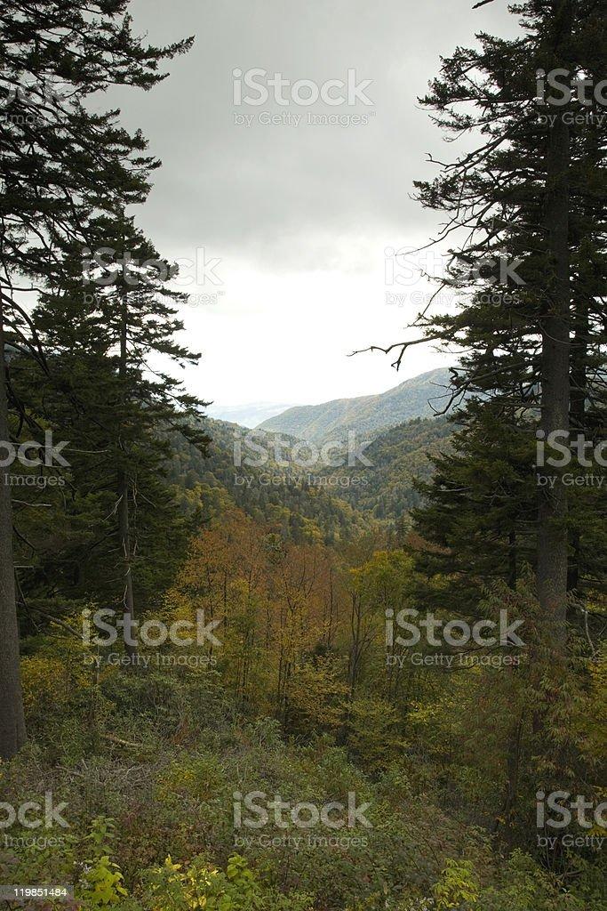 Autumn, Blue Ridge Parkway, NC stock photo