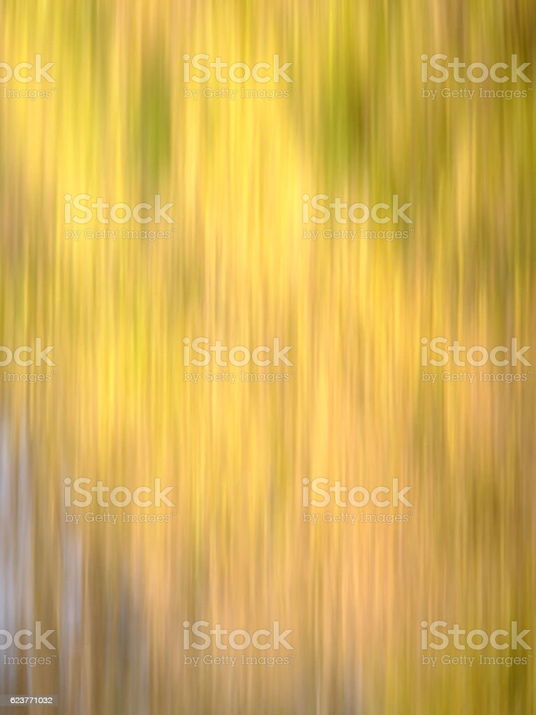 Autumn Blur - Yellows, with hints of Brown, Red & Green stock photo