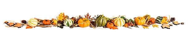 autumn border made of leaves and pumpkins - gourd stock photos and pictures