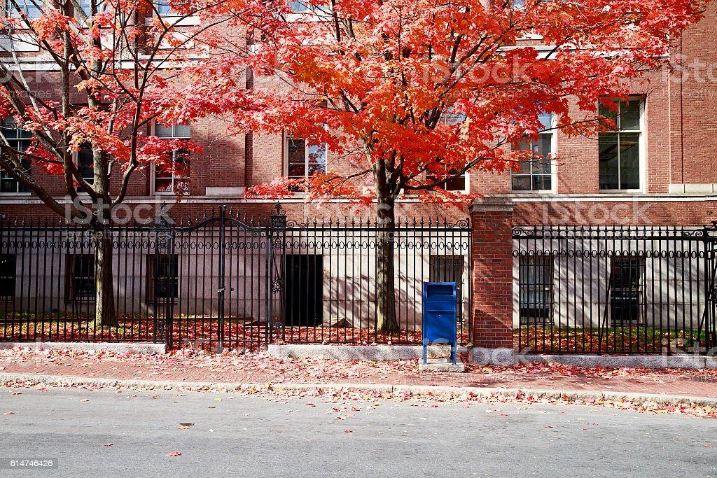autumn Boston stock photo