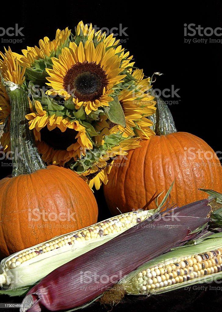 Autumn Bounty royalty-free stock photo