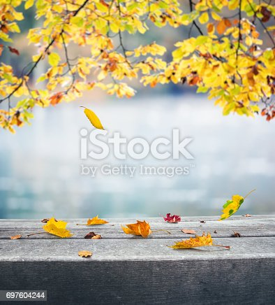 Autumn background with falling autumn leaves.
