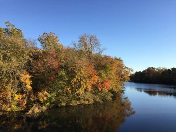 Autumn by the lake stock photo