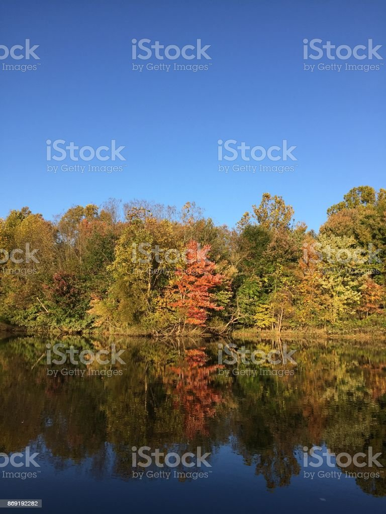 Autumn by the lake stock photo