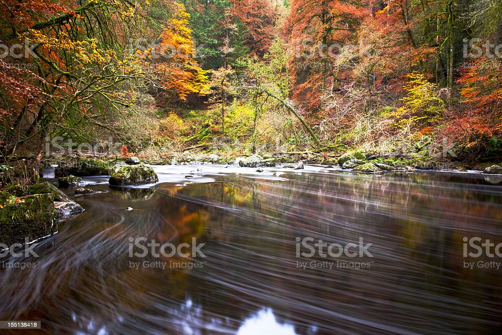 Autumn by the river Braan, Dunkeld. stock photo