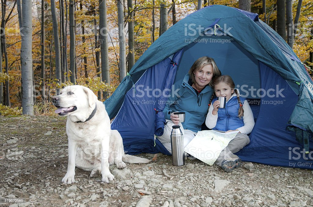 Autumn camping with dog royalty-free stock photo