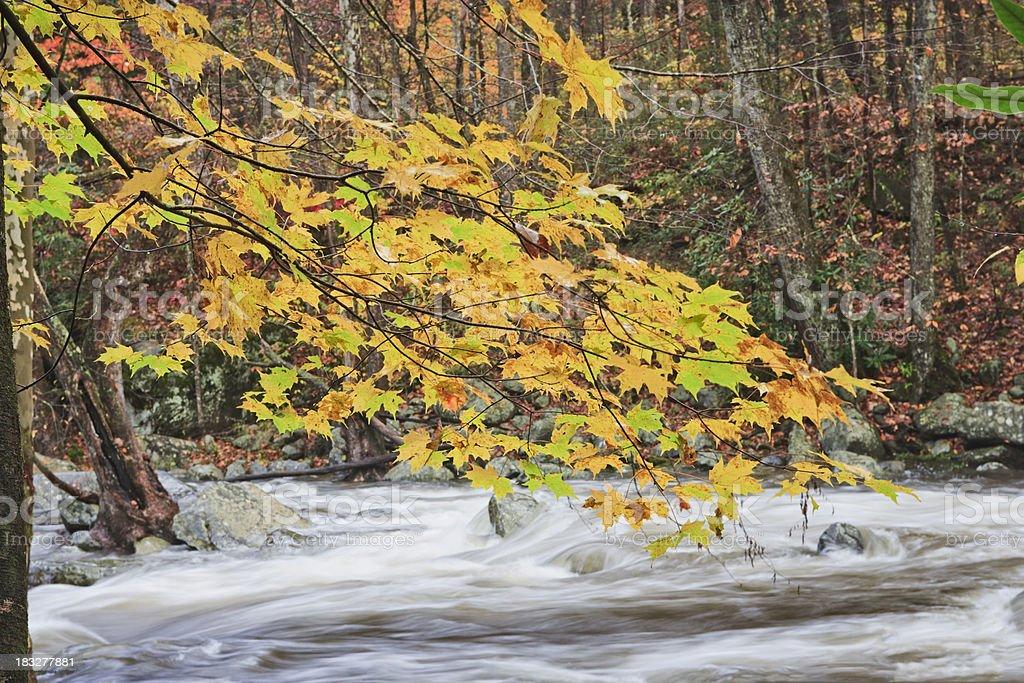 Autumn cascade in the Smoky Mountains royalty-free stock photo
