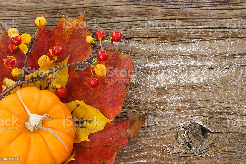 Autumn charm background with copy space royalty-free stock photo