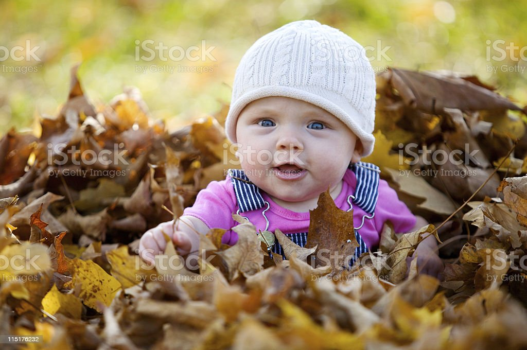 autumn child portraits stock photo