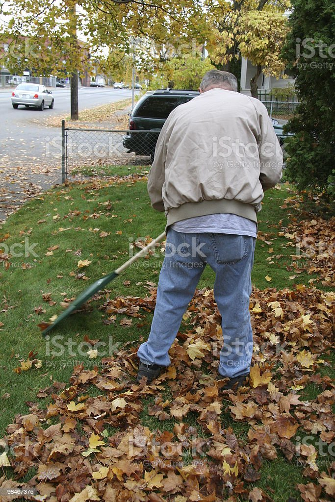 Autumn clean up royalty-free stock photo