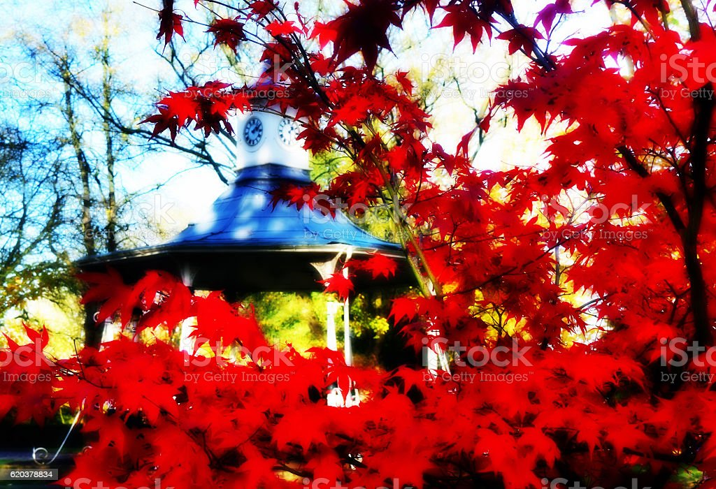 Autumn Clock zbiór zdjęć royalty-free
