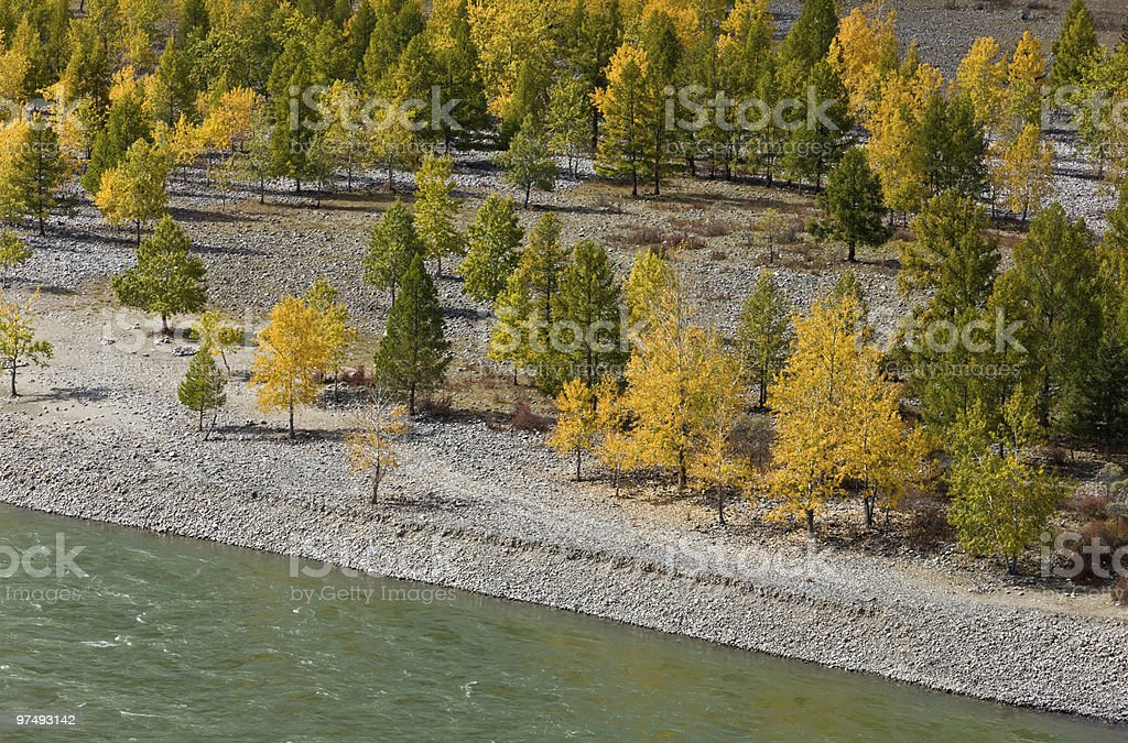 Autumn coast royalty-free stock photo