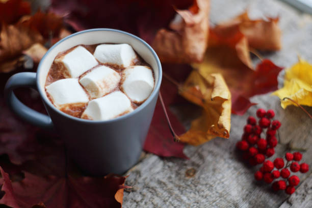 autumn cocoa with marshmellows - hot chocolate stock photos and pictures