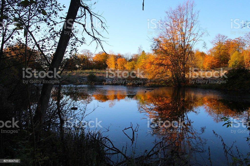 Autumn color mirroring photo libre de droits