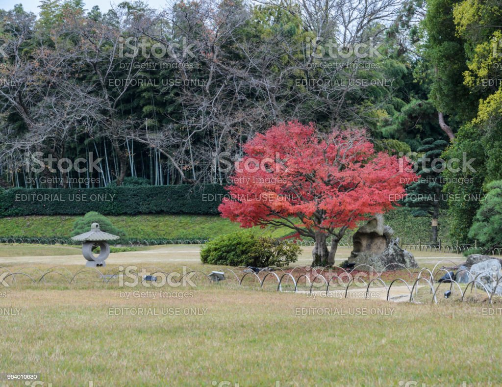 Autumn color of Korakuen garden in Okayama, Japan - Royalty-free Asia Stock Photo