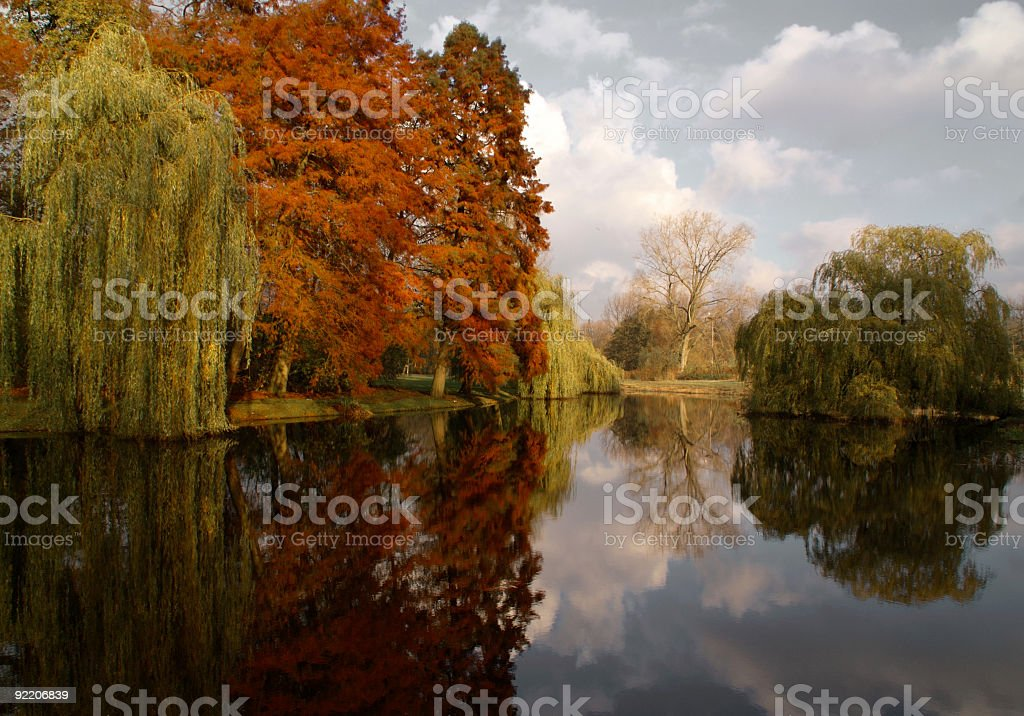 Autumn color play stock photo