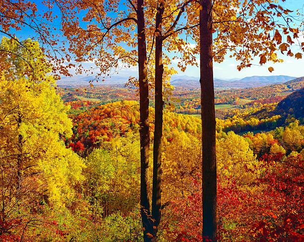 Herbst bunten Herbstlaub-Aussicht vom Blue Ridge Parkway, Virginia – Foto