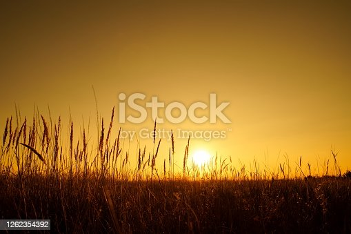 Nature landscape with sunset sky.