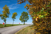 autumn colored trees under blue sunny sky in Thuringia, Germany