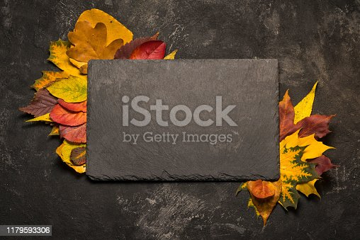 istock Autumn colorful leaves frame for a black slate stone on black background, template for your menu. 1179593306