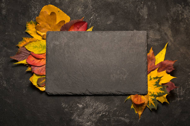 Autumn colorful leaves frame for a black slate stone on black background, template for your menu. stock photo
