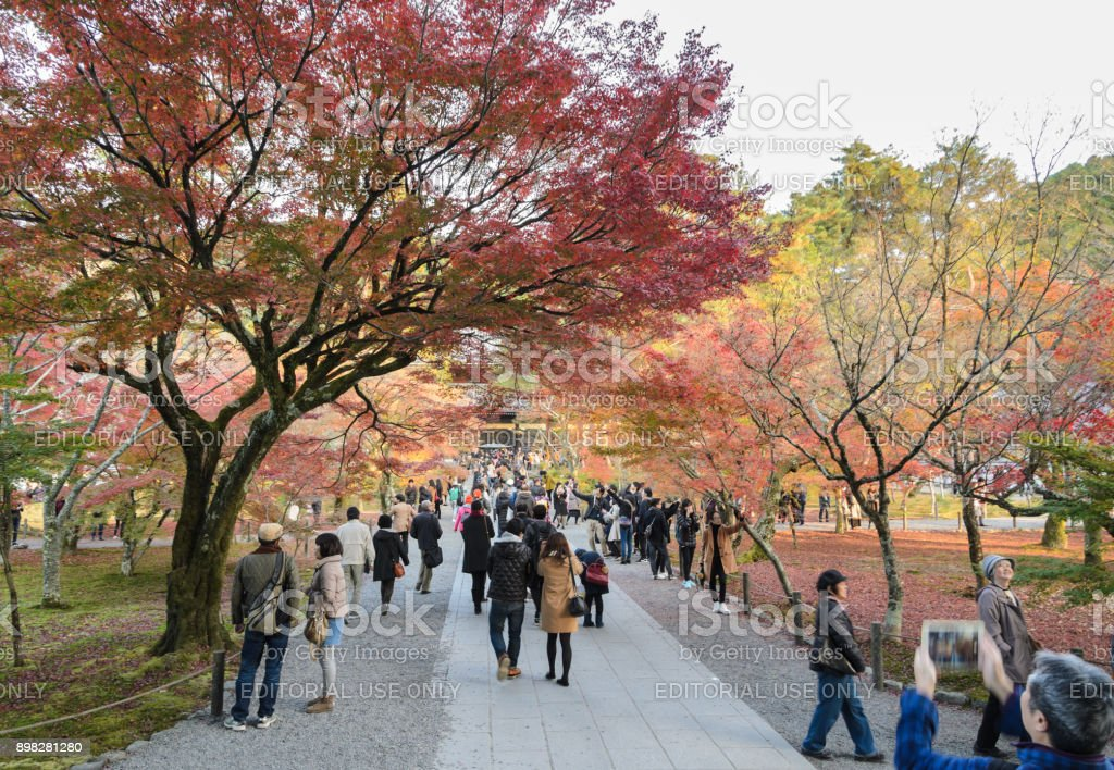 Autumn colorful maple leaves at Nanzenji temple in Kyoto, Japan stock photo