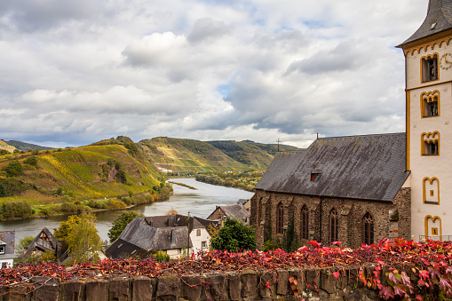 Autumn Colorful Moselle  Landscape in the village Bremm Germany