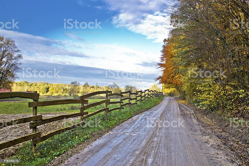 Autumn colorful mountain dirt road royalty-free stock photo