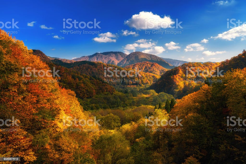 Autumn colorful mountain in Tohoku, Japan stock photo