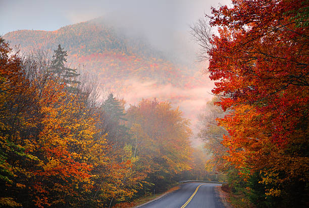 Autumn colors along the Kancamagus Highway in New Hampshire Autumn colors along the Kancamagus Highway in the White Mountains of New Hampshire. Photo taken on a misty morning during the peak fall foliage season. New Hampshire is one of New England's most popular fall foliage destinations bringing out some of the best foliage in the United States white mountains new hampshire stock pictures, royalty-free photos & images