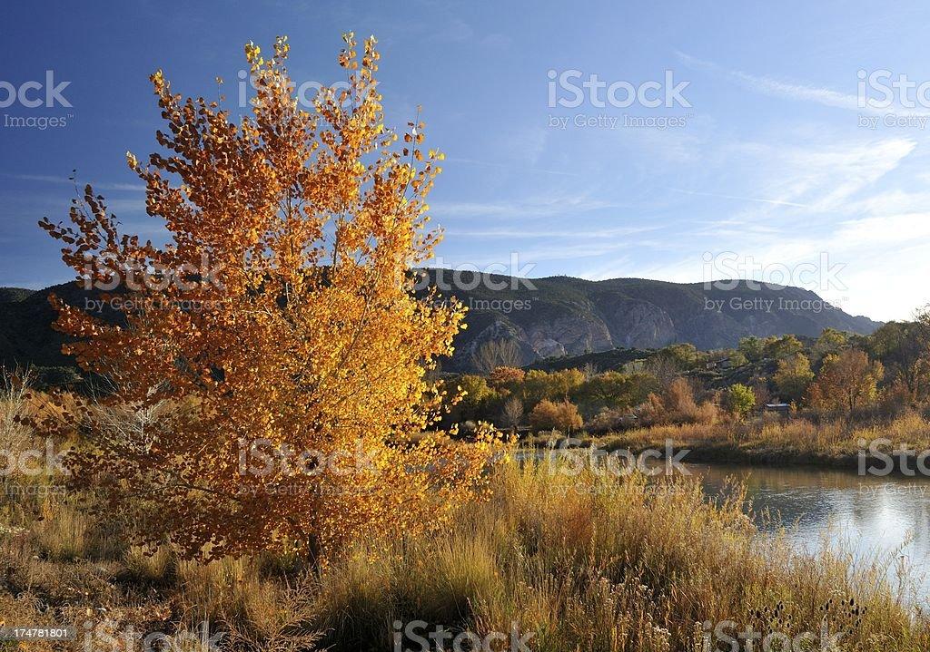 Autumn colors along the river. stock photo