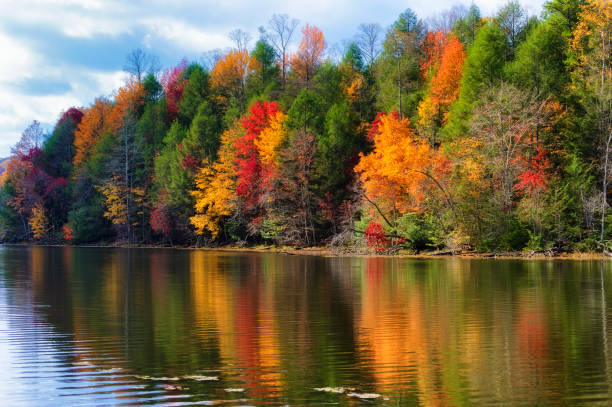 Autumn Colors Along the Shore of Bays Mountain Lake stock photo