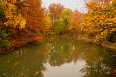 Autumn colors and lake reflection in Central Park, New York, USA.