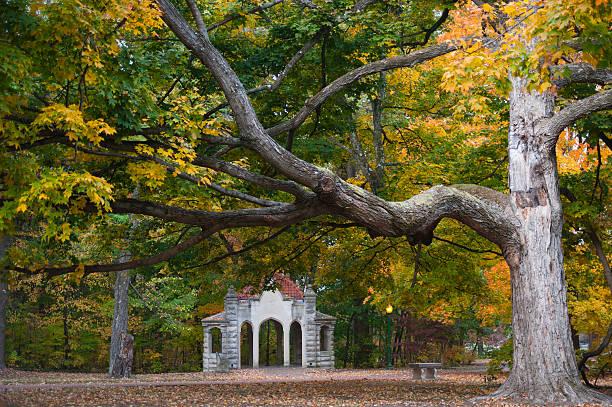 Autumn Colors at Indiana University