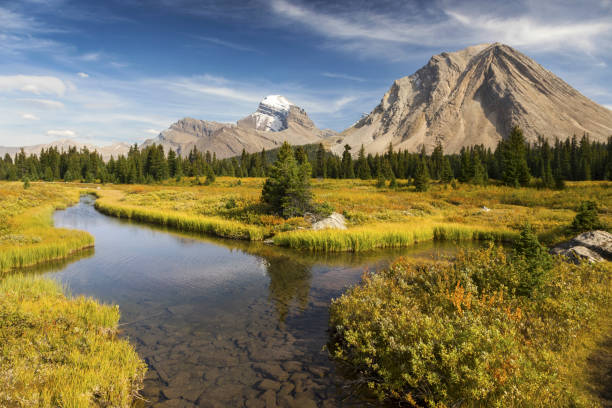 Autumn Colors Banff National Park Canadian Rocky Mountains stock photo